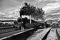 Treno storico.jpg