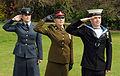Tri-Service Personnel Saluting MOD 45151321.jpg