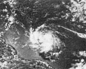 1974 Atlantic hurricane season - Image: Tropical Storm Alma of 1974