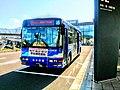 Turuga Station Bus Noriba1.jpg