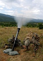 U.S. Marines and saliors of exercise Platinum Lion 14-1 conduct live-fire on July 20, 2014 140720-M-DW621-964.jpg