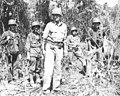 USA-P-Papua-p302 GENERAL EICHELBERGER AND MEMBERS OF HIS STAFF look over newly taken ground in the Triangle area. milner.jpg