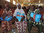 USAID Joins Partners to Launch Bed nets Mass Distribution Campaign in Sikasso (18354303912).jpg