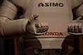 USA - California - Disneyland - Asimo Robot - 15.jpg