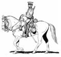 USMountedRifleman(1846).png