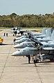 US Navy 041207-N-6842R-142 Two F-14D Tomcats taxi near four F-A-18A- Hornets after a training flight.jpg
