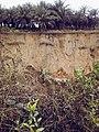 Udo Inwang gully erosion site, Uyo, Akwa Ibom State Nigeria.jpg