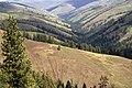 Umatilla National Forest, Umatilla Breaks (36878556675).jpg