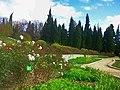 Unnamed1 - panoramio (941).jpg