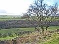 Upper Browney valley - geograph.org.uk - 357724.jpg