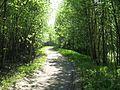 Vantaa, Finland - panoramio (20).jpg