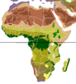 Vegetation Africa blank.png