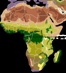 carte d'Afrique avec les biomes représentés en couleur