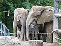Verleihung der EGHN-Plakette an den Zoo Wuppertal 004.jpg