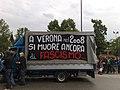 Verona manifestazione2.jpg