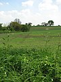 View along a field's edge - geograph.org.uk - 1281227.jpg