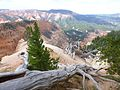 View of Cedar Breaks from Rattlesnake Creek Trail, DyeClan.com - panoramio.jpg