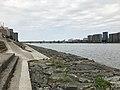 View of Tachibanabashi Bridge on Oyodogawa River 3.jpg