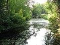 View south along Muck Fleet - geograph.org.uk - 1496171.jpg