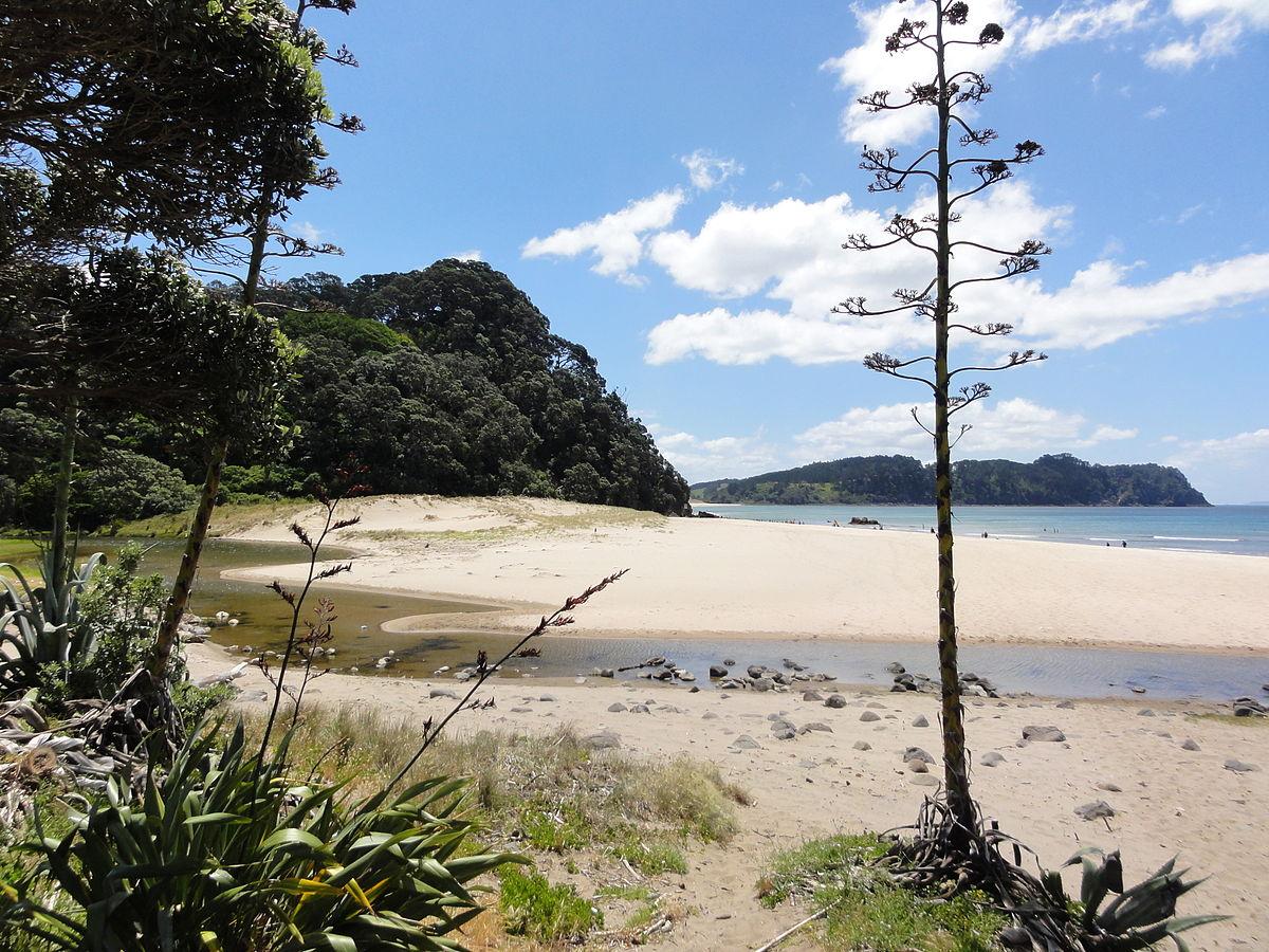 Hot Water Beach – Wikipedia