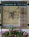 Vignerons de Volnay.jpg