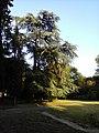 Villa Borghese Roma (14756578597).jpg