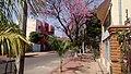 Vista de la calle Antequera - Luque - panoramio.jpg