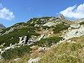 Vysoké Tatry, Mengusovská dolina, září 2011 (52).JPG