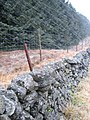 Wall and fence - geograph.org.uk - 124047.jpg