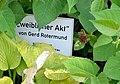 Weiblicher Akt by Gerd Rotermund, Frohnleiten - plaque.jpg