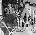 Wereld Dierendag 1964 , voederen van de dieren, Bestanddeelnr 916-9731.jpg