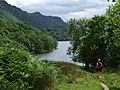 West Highland Way, Loch Lomond - geograph.org.uk - 686646.jpg