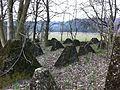 Westwall Hoeckerlinie Winterbach.jpg