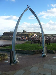 Is Whitby A Dog Friendly Beach