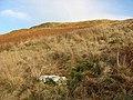 White Cove - geograph.org.uk - 636295.jpg