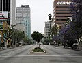 Wilshire Boulevard holiday morning.jpg