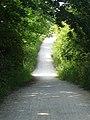 Wirral Way.jpg