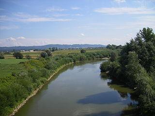 Wisłoka river in Poland