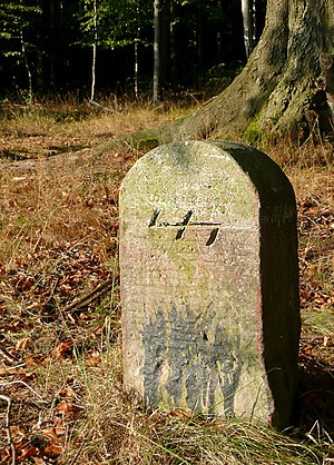 Wolfsangel - The Wolfsangel on an old field boundary stone in the Deister in Lower Saxony.