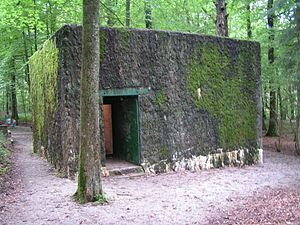 Wolfsschlucht I - One of the two bunkers which made up the complex.