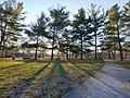 Woodland Park at sunrise.jpg