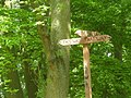 Woodland fingerpost at Little Wenlock, Shropshire, England.jpg