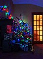 Wraxall 2013 MMB 93 Christmas Tree.jpg