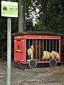 Wuppertal, NBT, Bhf Ottenbruch, Trafostation, Bild 1.jpg