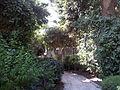 YAD BEN ZVI VIEW 25 20120912 142915.jpg