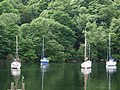 Yachts moored on Windermere on the west side of The Ferry House - geograph.org.uk - 872783.jpg