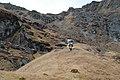 Yaphu 56900, Nepal - panoramio (1).jpg