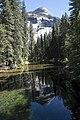 Yosemite (14545413842).jpg
