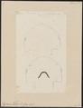 Zygaena tiburo - kop - 1700-1880 - Print - Iconographia Zoologica - Special Collections University of Amsterdam - UBA01 IZ14100063.tif