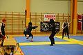 Örebro Open 2015 128.jpg